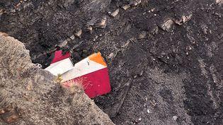 Capture d'écran d'une vidéo montrant ce qu'il reste de la dérive de l'A320 de la Germanwings après son crash dans les Alpes françaises, le 24 mars 2015. (DENIS BOIS / GRIPMEDIA / AFP)