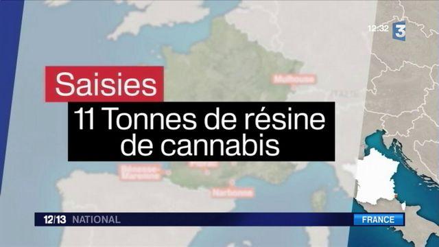 Cannabis : saisie historique à Valence