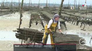 Une ostréicultrice bio dans le bassin d'Arcachon. (France 2)