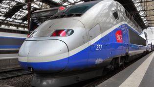 Un TGV à quai à la gare de Lyon, à Paris, le 7 janvier 2017. (MANUEL COHEN / AFP)