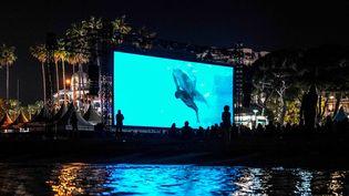 """Les spectateurs ont pû redécouvrir """"Le Grand bleu"""" à Cannes grâce à une projection nocturne vendredi 11 mai, 30 ans jour pour jour après sa présentation au Festival  (OLIVIER MORIN / AFP)"""