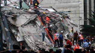 Les secours à la recherche de victimes du séisme du 19 septembre 2017, ici dans un quartier de Mexico. (VICTOR CRUZ / AFP)