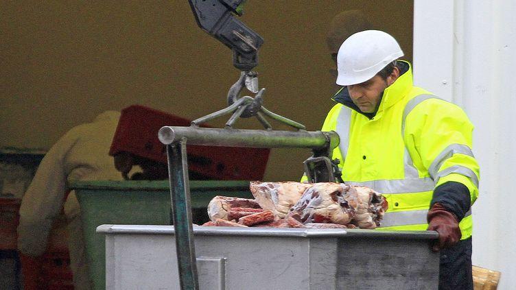 Un salarié de Spanghero transporte des pièces de viande, à Castelnaudary (Aude), le 15 février 2013. (JEAN PHILIPPE ARLES / REUTERS)