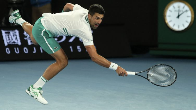 Novak Djokovic lors de son match face au Canadien, Milos Raonic, le 14 février 2021.  (BRANDON MALONE / AFP)