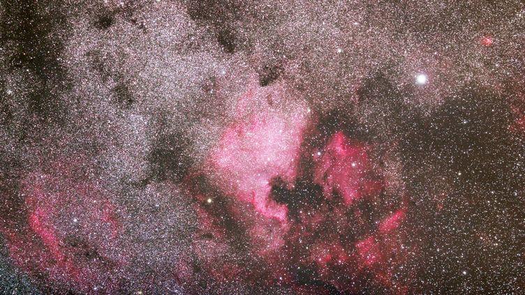 Constellation du Cygne. L'étoile la plus brillante à droite s'appelle Deneb. (CHRISTOPHE LEHENAFF / PHOTONONSTOP)