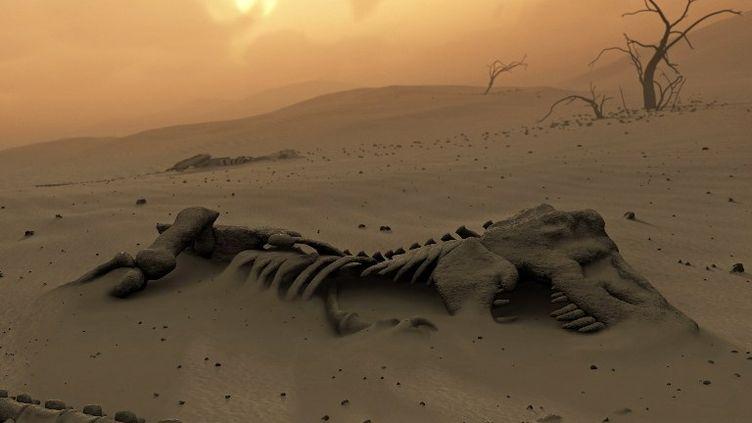 Selon une étude publiée le 7 février 2013, une météorite s'est écrasée sur Terre 33 000 ans avant l'extinction des dinosaures. (MARK GARLICK / MGA / AFP)