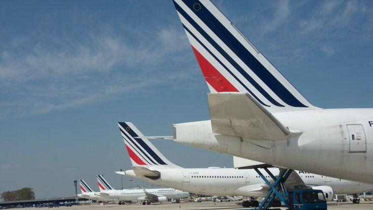 Des avions Air France sur le tarmac de l'aéroport de Roissy-Charles-de-Gaulle, le 28 avril 2021. (SANDRINE MARTY / HANS LUCAS / AFP)