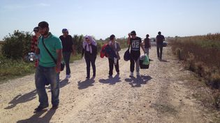 Les migrants sur la route reliant Sid (Serbie) ) Tovarnik (Croatie). (ELISE LAMBERT / FRANCE TV INFO)