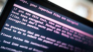 Message sur un écran d'ordinateur d'attaque informatique. (ROB ENGELAAR / ANP)