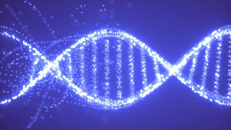 Molécule d'ADN (AFP - KTSDESIGN/SCIENCE PHOTO LIBRARY / KTS)