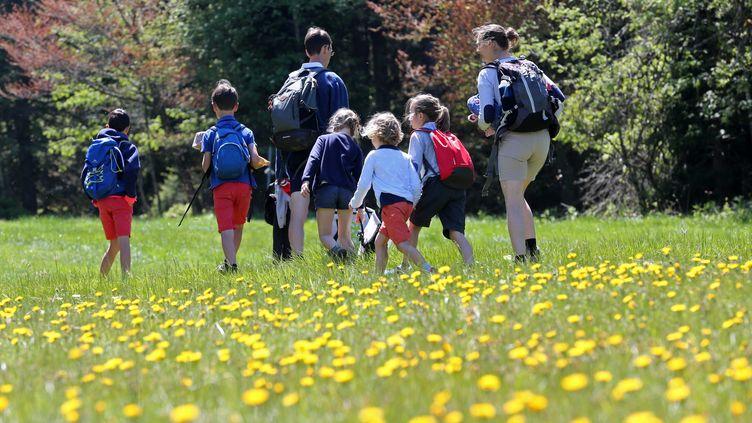 Des enfants accompagnés d'adultes font une randonnée dans la nature, le 31 mai 2020, à Orbey (Haut-Rhin). (VANESSA MEYER / MAXPPP)