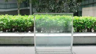 """Proposer des fenêtres qui s'adaptent aux rayons du soleil et à la température, c'est l'invention de plusieurs chercheurs de Singapour. Ces fenêtres sont dites """"intelligentes"""". (France 3)"""
