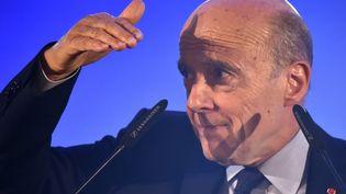Les soutiens d'Alain Juppé anticipent les élections municipales de 2020. (GEORGES GOBET / AFP)