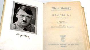 """Une copie de la première édition de """"Mein Kampf""""  (Marcus Fþhrer / DPA / DPA/AFP)"""