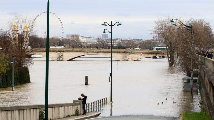 La crue de la Seine, à Paris, ici le 24 janvier 2018. (YANN SCHREIBER / RADIO FRANCE)