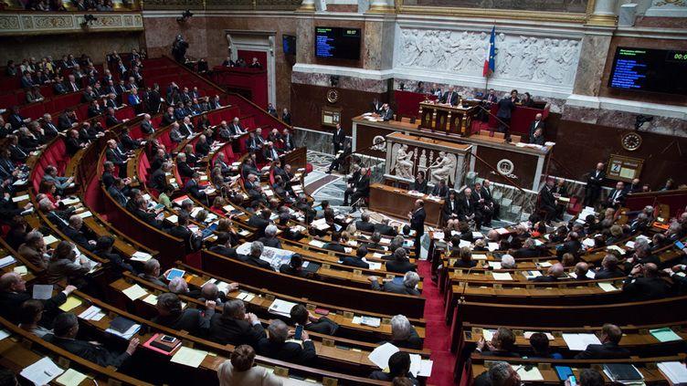 (474 députés ont voté pour, tandis que 32 ont voté contre, tandis que 32 s'abstenaient © MaxPPP)