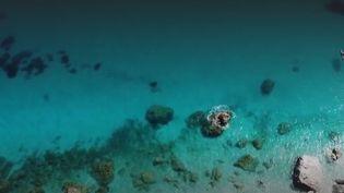 Les équipes du 13 Heures de France 2 vous font découvrir les plages les plus secrètes de la planète. Direction la Sardaigne dans la crique de la Cala Goloritzé. Ses eaux sont considérées par certains comme les plus belles de la Méditerranée. (CAPTURE ECRAN FRANCE 2)