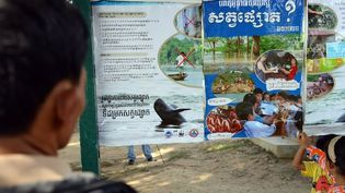 Au nord de Pnom-Penh, la capitale du Cambodge, des habitants regardent un panneau mis en place par les autorités pour informer sur la protection des dauphins du Mékong. (TANG CHHIN SOTHY / AFP)