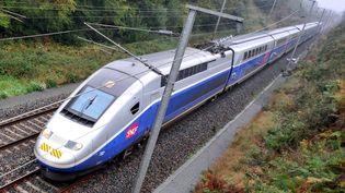 Un TGV bat un record de vitesse à 230 km/h sur la lsection Plouagat-Guingamp, le 8 octobre 2009. (  MAXPPP)