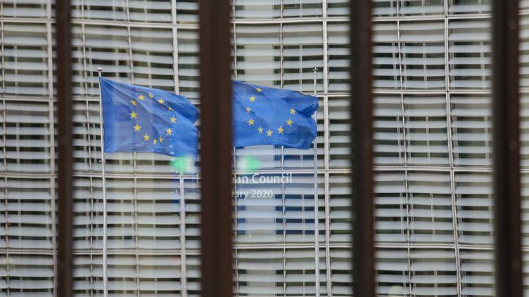 Des drapeaux de l'Union européenne devant la Commission européenne à Bruxelles, le20 février 2020. (NICOLAS ECONOMOU / NURPHOTO / AFP)