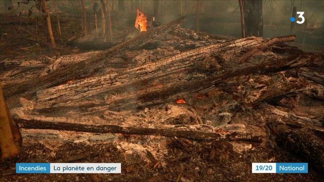 Incendies en Amazonie : les incendies pourraient accélérer les dérèglements climatiques en cours
