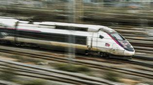 Un TGV arrive en gare de Lille (Nord), le 29 mars 2018. (PHILIPPE HUGUEN / AFP)