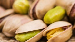 Disparue en France depuis le 20e siècle, la culture de la pistache fait son retour en France, dans le Vaucluse. (France 2)