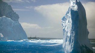 Icebergs près de l'Antarctique (AFP PHOTO - HO - Sea Shepherd Conservation Society - Barbara Veiga)