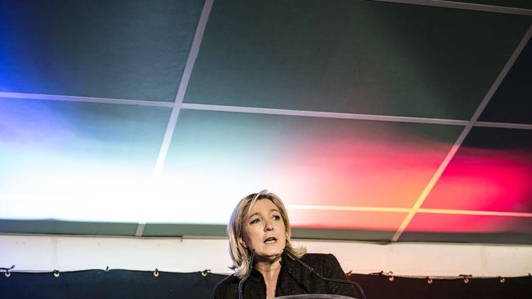 Marine Le Pen prononce un discours lors d'un rassemblement consacré aux élections départementales à LaRoche-sur-Foron (Haute-Savoie),le 7 février 2015. (JEAN-PHILIPPE KSIAZEK / AFP)
