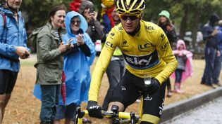 Le Britannique Christopher Froome, le 26 juillet 2015 lors de la dernière étape de la 102e édition du Tour de France. (SEBASTIEN NOGIER / AFP)