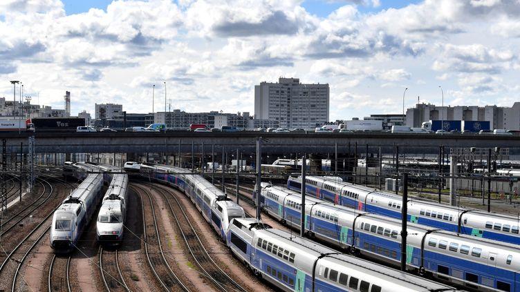 Des TGV dans une gare parisienne. (GERARD JULIEN / AFP)