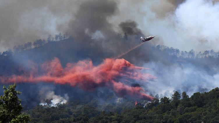 Un Tracker largue du retardant anti-incendie, le 26 juillet 2017, à Bormes-les-Mimosas (Var). (ANNE-CHRISTINE POUJOULAT / AFP)