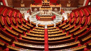 Les élections législatives se dérouleront les 11 et 18 juin 2017. (PHOTO12 / GILLES TARGAT / AFP)