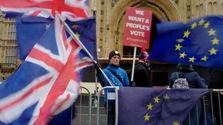 Un militant anti-Brexit devant le Parlement, le 16 janvier 2019. (TOLGA AKMEN / AFP)