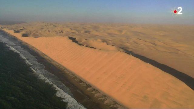 Désert du Namib : les plus anciennes dunes du monde