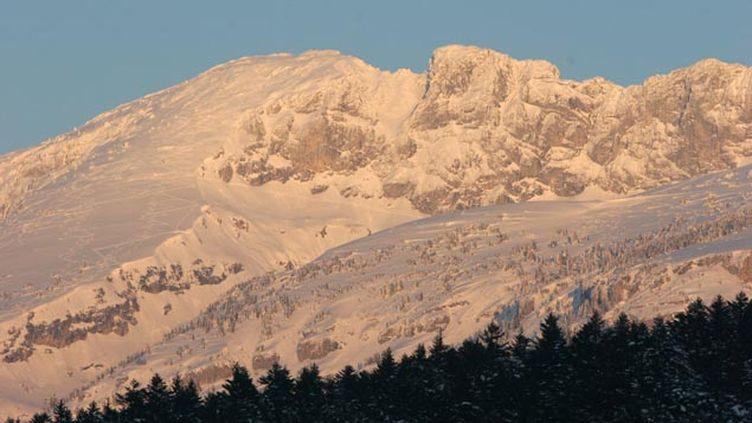 (L'avalanche s'est déroulée au dessus de Villars-de-Lans (Isère) © Maxppp)