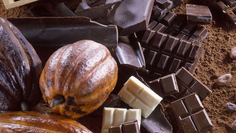 Selon les chercheurs de l'Alliance des pays producteurs de cacao, levieillissement des vergers et les effets du changement climatique menacent le cacao dans le monde. (MOND'IMAGE / TIPS / PHOTONONSTOP / AFP)