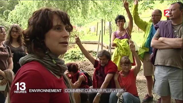 Environnement : comment cultiver plus vert
