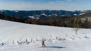 Une femme pratique le ski de fond à Oderen (Haut-Rhin), le 6 février 2019. Photo d'illustration (SEBASTIEN BOZON / AFP)