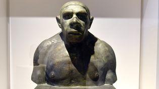 Buste de l'homme de Néandertal, Erna Engel-Baiersdorf et Egon von Eickstedt, 1924 (Muséum d'histoire naturelle de Vienne).  (MNHN - JC Domenech)