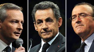 Bruno Le Maire, Nicolas Sarkozy et Hervé Mariton sont candidats à l'élection pour la présidence de l'UMP, dont le premier tour se déroule samedi 29 novembre 2014. (DOMINIQUE FAGET / AFP)