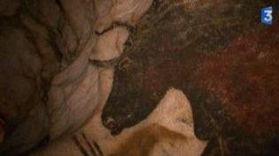 70 ans de la grotte de Lascaux : une caméra de France 3 autorisée à filmer  (Culturebox)