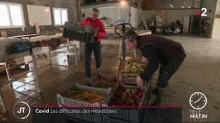 Des maraîchers bio en Indre-et-Loire. (France 2)