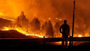 """Un pompier regarde les flammes de l'incendie baptisé """"Rocky"""", dimanche 2 août 2015 en Californie (Etats-Unis). (JOSH EDELSON / AFP)"""