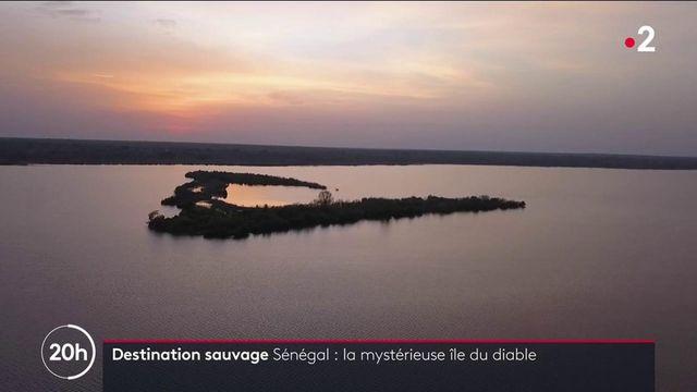 Sénégal : l'île du diable recèle bien des mystères