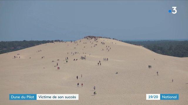 Dune du Pilat : la plus haute dune d'Europe menacée