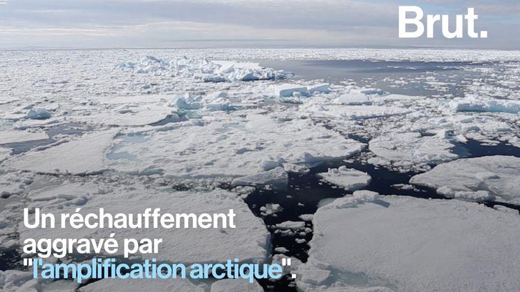 VIDEO. En Arctique, 2019 est la deuxième année la plus chaude depuis 1900 (BRUT)