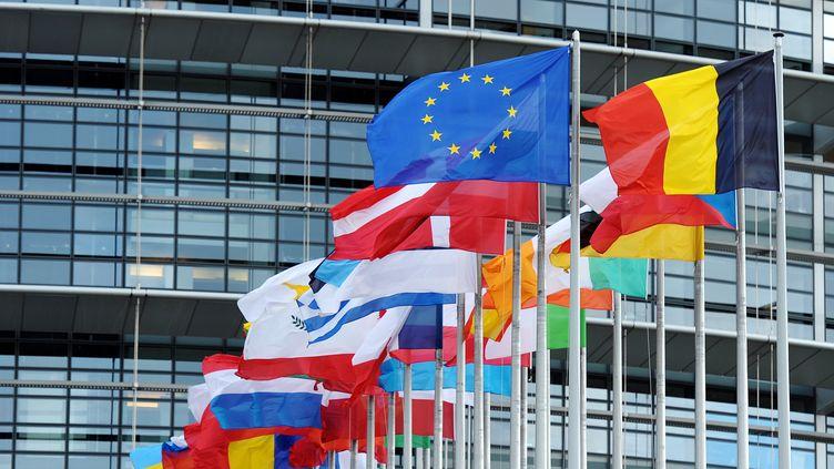 Des drapeaux flottent devant le Parlement européen, le 12 octobre 2012 à Strasbourg (Bas-Rhin). (FREDERICK FLORIN / AFP)