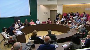 Le conseil participatif de Kingersheim (Bas-Rhin) (CAPTURE ECRAN FRANCE 2)