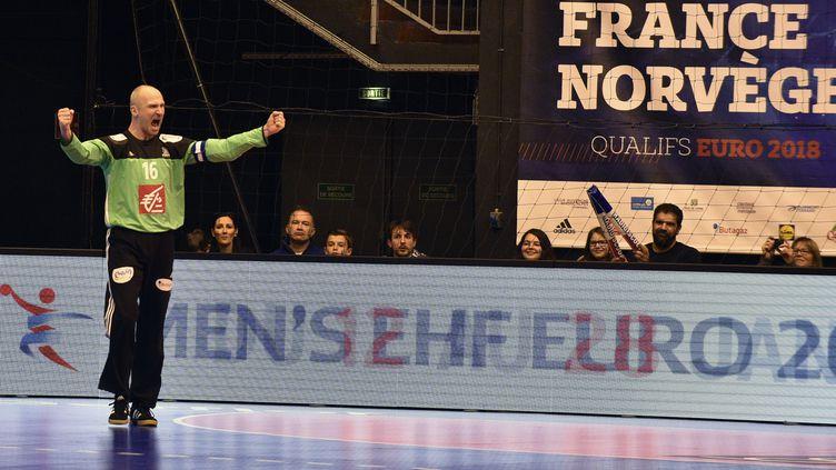 Thierry Omeyer, gardien de l'équipe de France de handball, lors de sa dernière sélection.  (THIERRY ZOCCOLAN / AFP)